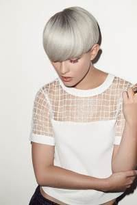 silver-grey-hair-colours-200x300