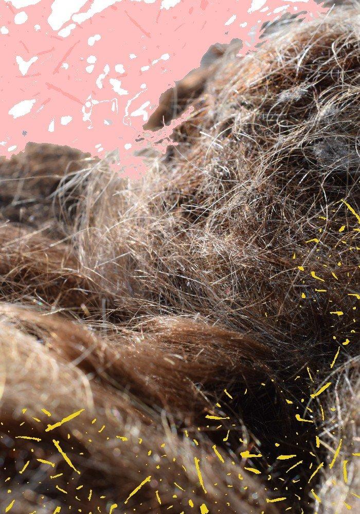 A Sustainable Bury St Edmunds Hair Salon